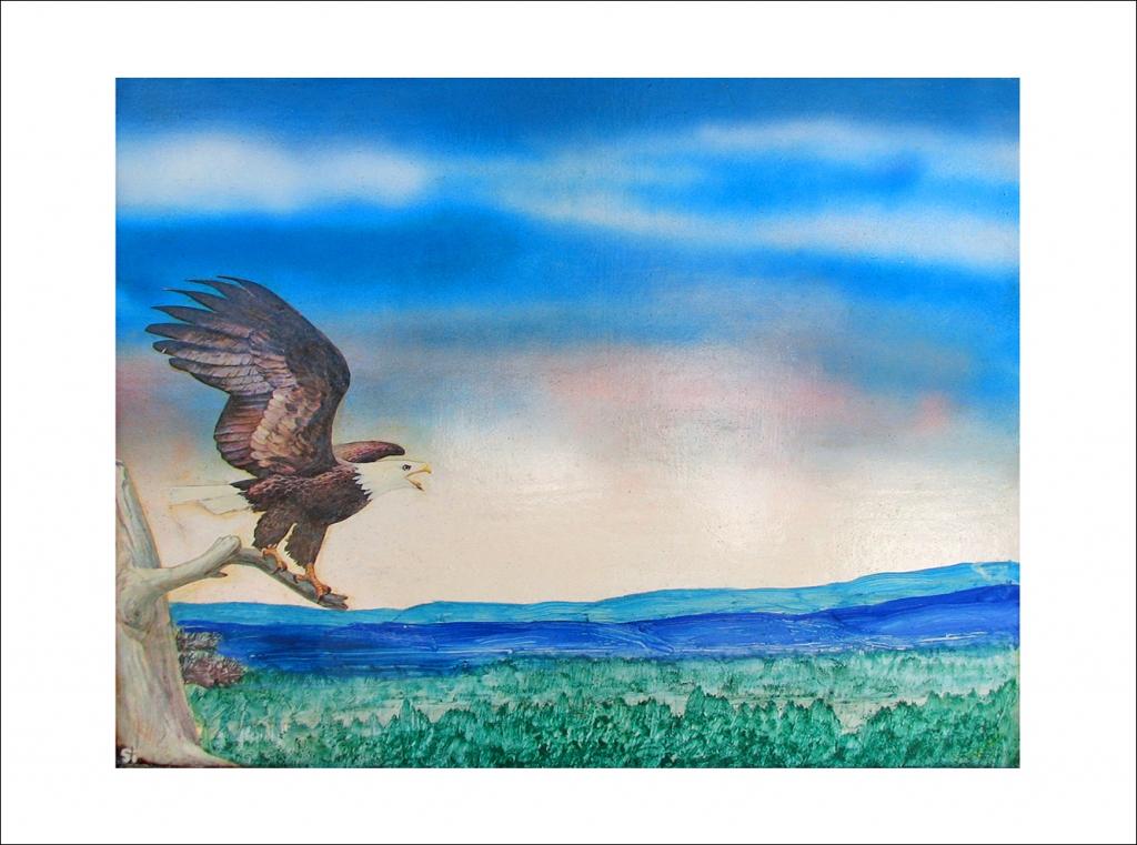 Eagle's Canyon Perch