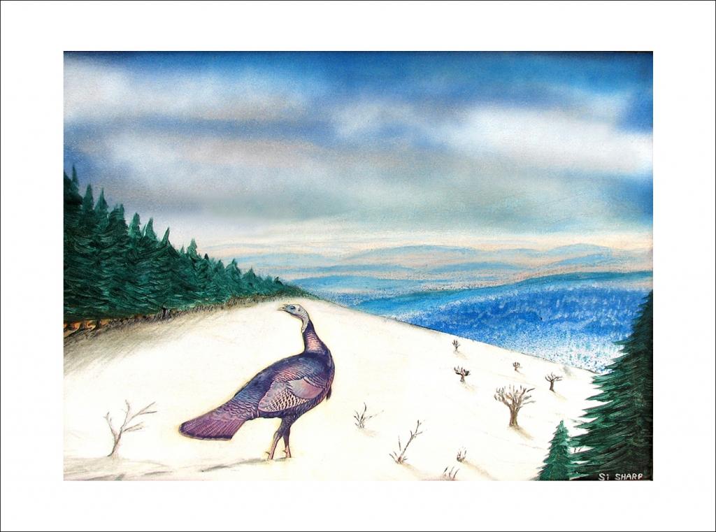 Turkey on Snowy Mountain